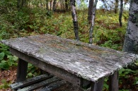 table-in-the-wilderness2-web